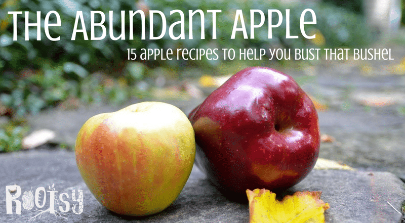 What do you do when you just have too many apples? Get to work in the kitchen! These 15 delicious apple recipes will help you bust that bushel in no time! Rootsy.org