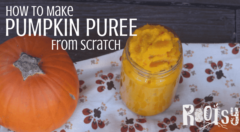 Learn how to make pumpkin puree from scratch with this easy and frugal tutorial.