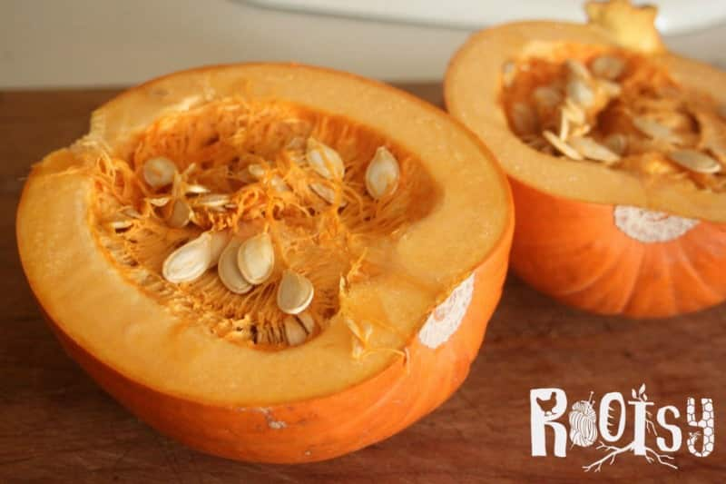 A pumpkin cut in half with seeds exposed.