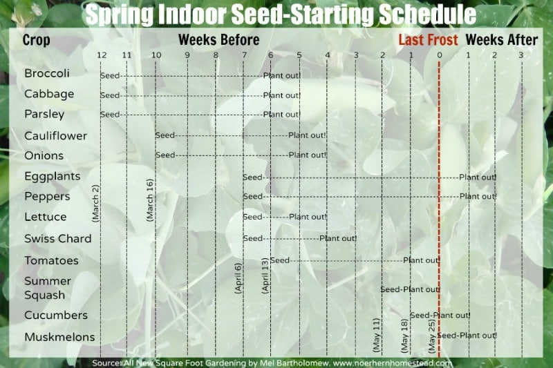 Cold Climate Gardening Seed Starting Scheudle
