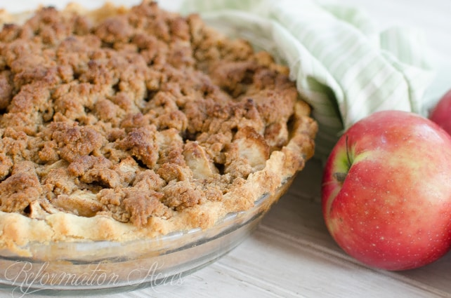 15+ apple recipes. What better way is there to use apples than a delicious apple pie? Rootsy.org