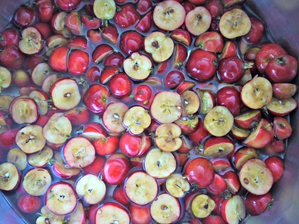 There are many recipes that include crab apples, including jams and jellies! Rootsy.org