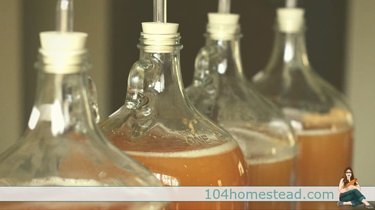 Hard apple cider is easy to make and so tasty!