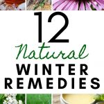 collage of herbs and herbal remedies for colds