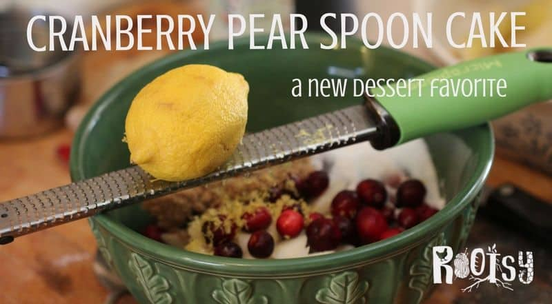 Cranberry Pear Spoon Cake