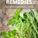 herbs for cold remedies on wood slab