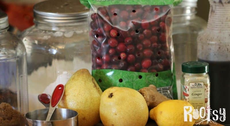 Ingredients for cranberry pear spoon cake