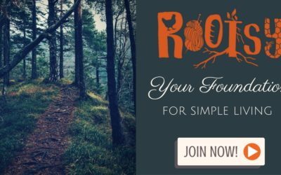 Join Rootsy to Make those 2017 Goals Come True
