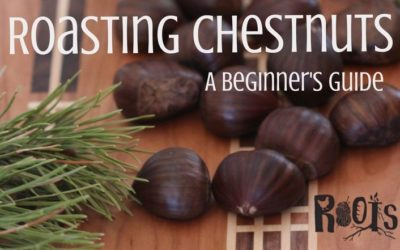 Beginner's Guide to Roasting Chestnuts