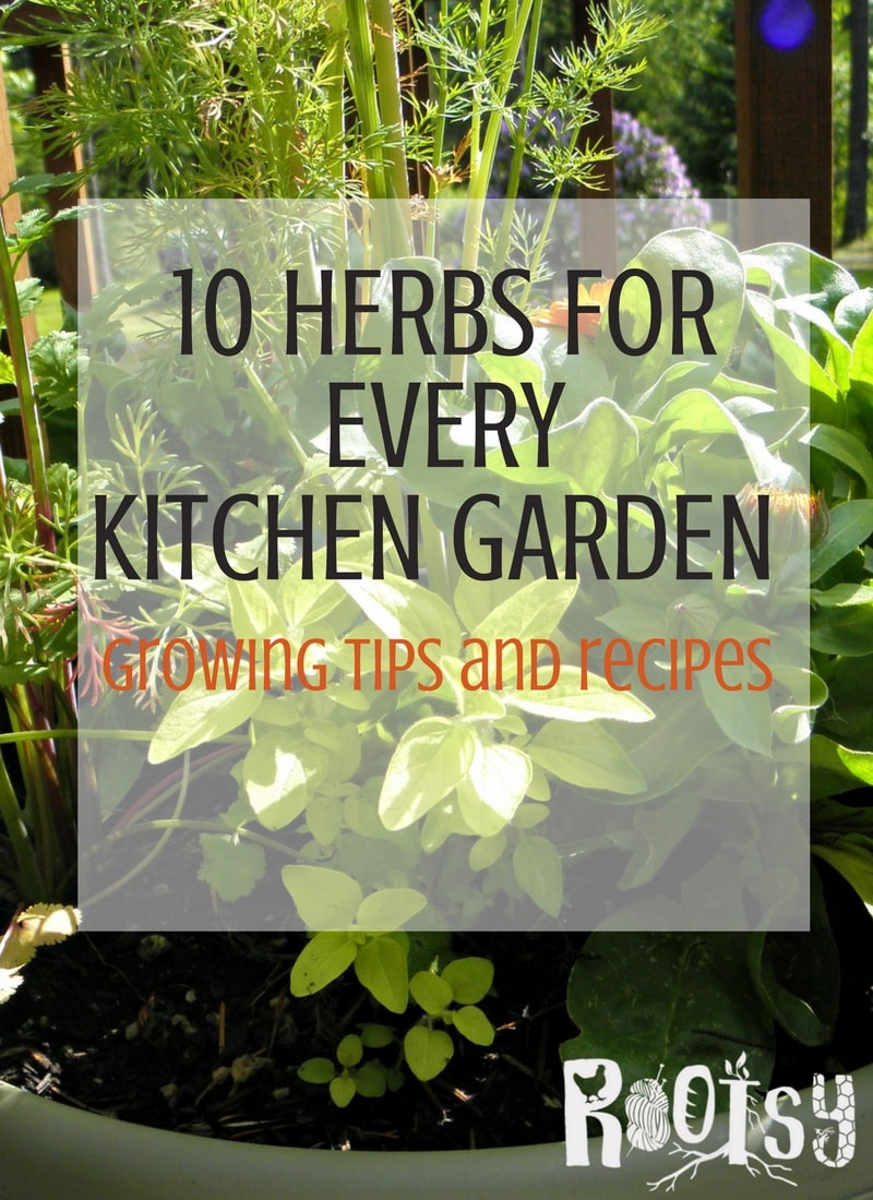 10 Herbs for every kitchen garden + recipes to use them   Rootsy.org