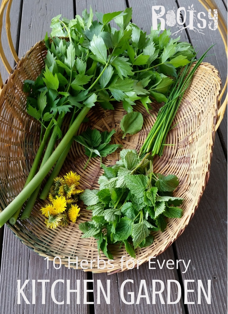 image of herbs, lovage, chives, dandelion flowers, and mint, from the kitchen garden in a basket.