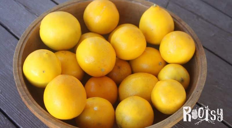 A wooden bowl full of meyer lemons.
