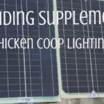 Experiencing the ebb and flow of egg production? You can safely provide supplemental chicken coop lighting when you take these factors into consideration | Rootsy.org
