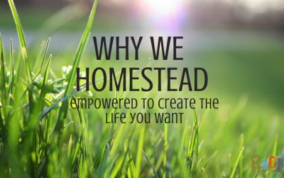 Why We Homestead