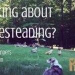 Thinking About Homesteading? The Rootsy Founders weigh in about why we homestead | Rootsy.org