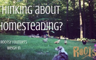 Thinking About Homesteading? Rootsy Founders Weigh In