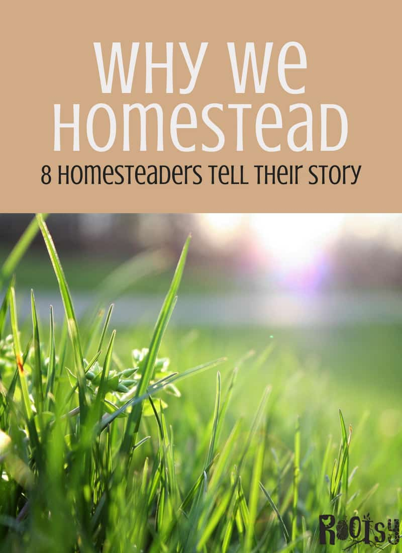 The foundation of Rootsy is simple living and homesteading. We interviewed homesteaders all around the USA. Let us tell you why we homestead.