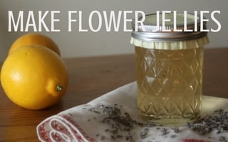 Make the most of the beautiful blooms of spring and summer and make flower jellies to preserve their flavor for winter eating | Rootsy.org