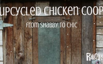 DIY Upcycled Chicken Coop