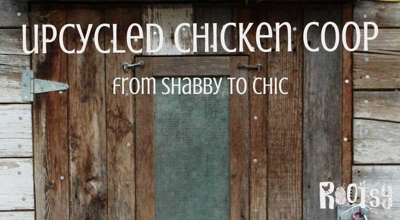 How to Build a DIY Upcycled Chicken Coop plus links to 10 Free Plans
