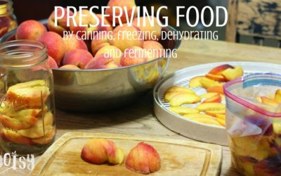 Four Ways of Preserving Food