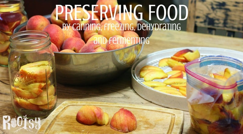 Preserving food by canning, freezing, dehydrating and fermenting is a great way to get the most out of your garden harvest | Rootsy.org