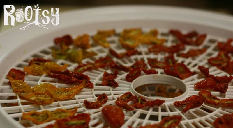 image of dehydrating cherry tomatoes for preserving food