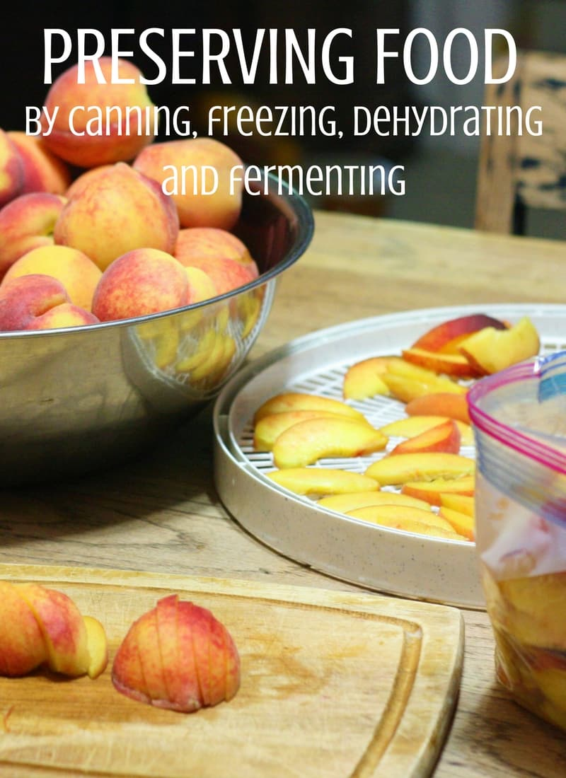 image of peaches in large bowl, peaches cut on cutting board, peaches in ziplock bag, peaches on dehydrator tray
