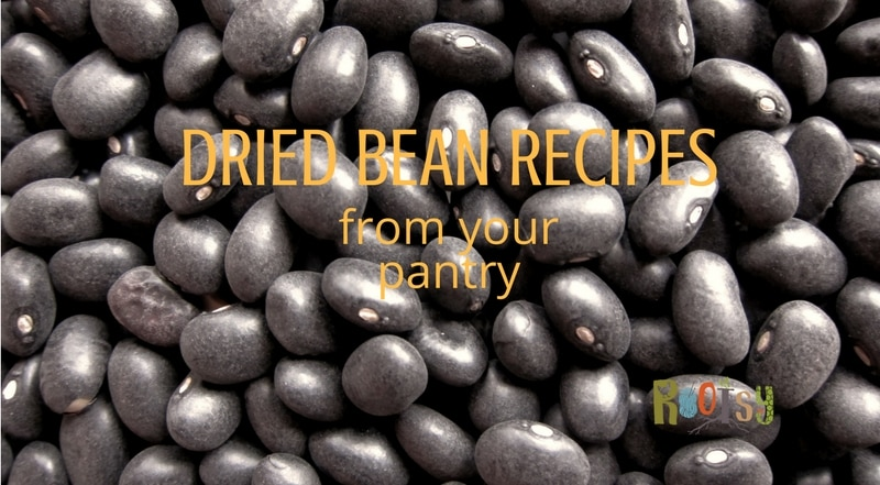 Stocking your pantry with dried beans makes good sense. Beans are a great source of protein and versatile, as you will see in these dried bean recipes | Rootsy.org