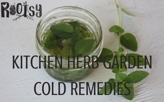 Kitchen Herb Garden Cold Remedies