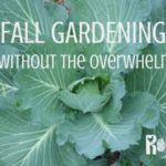 Do you think fall gardening is too much work? It doesn't have to be. Learn how to grow food for your family in the fall in any gardening zone | Rootsy.org