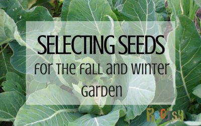 Selecting Seeds for Your Fall Garden