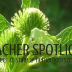 When her family moved to a 14-acre farm, Kristine Brown of HerbalRootsZine became fascinated with the wild plants that grew all around her. Teacher Spotlight: Meet Kristine at HerbalRootsZine.com | Rootsy.org