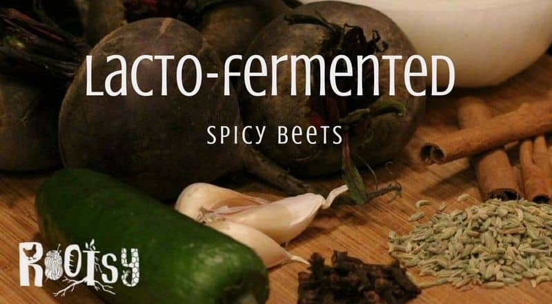 Whether you are growing your own or buying from a grower or farmer's market, you may experience 'produce glut'. Lacto-fermented Spicy Beets are one answer.