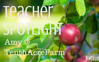 Teacher Spotlight: Amy Stross of Tenth Acre Farm