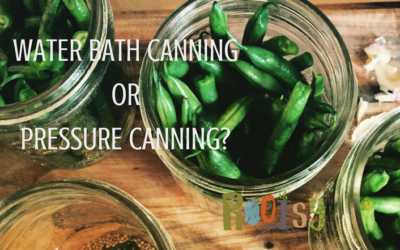 Water Bath Canning or Pressure Canning?