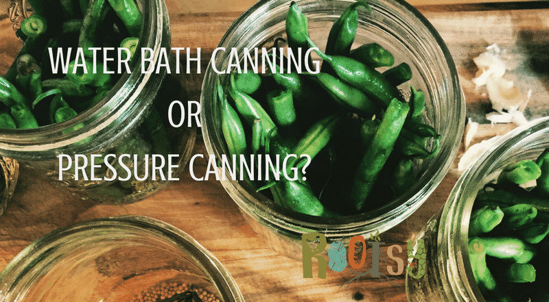 Water Bath Canning or Pressure Canning? Learn which is the right for you with Rootsy!