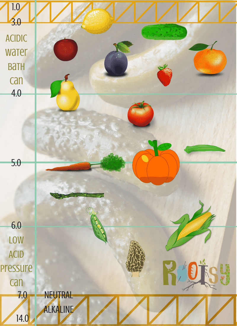 Wonder if you should Water Bath Can or Pressure Can fruits and veg? It all has to do with the acidity level! | Rootsy