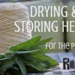 drying and storing herbs fb featured | rootsy.org