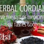 Homemade Medicinal Cordials are easy to prepare and make unique and notable holiday gifts or housewarming presents. The variations are endless and limited only by how many empty bottles you can find to fill! | Rootsy.org