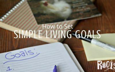 Set Simple Living Goals for Long Term Success