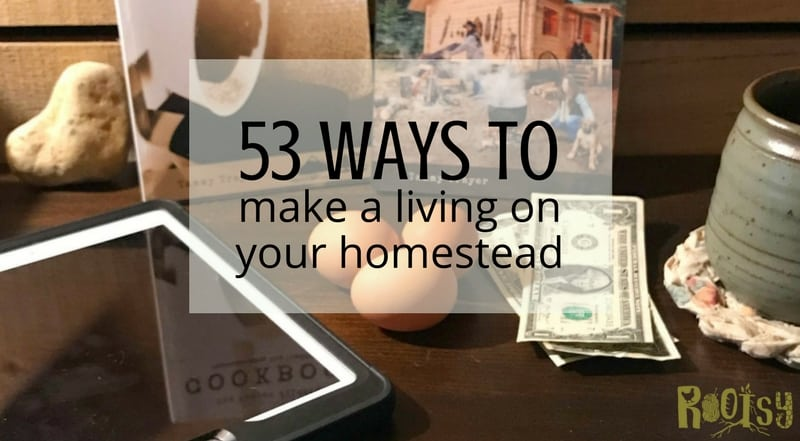 You don't need a lot of property to make this happen. Get your ideas flowing about making a living on your homestead. These 53 ways will help you get started.