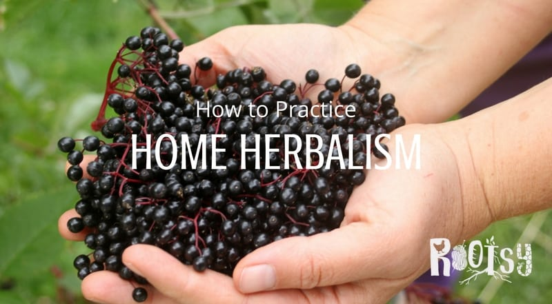 How to Practice Home Herbalism