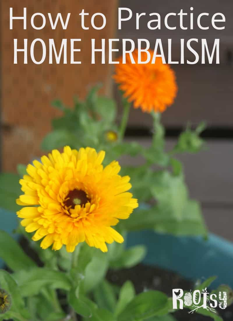 Increase self-sufficiency while keeping the body and home healthy by learning to practice home herbalism with these easy methods and courses | Rootsy.org