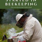 beekeeper smoking hive to harvest honey