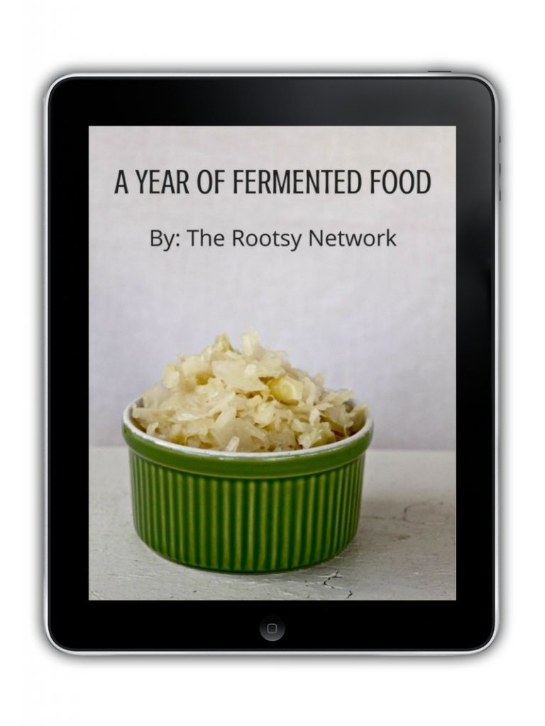 Cover of a year of fermented food ebook