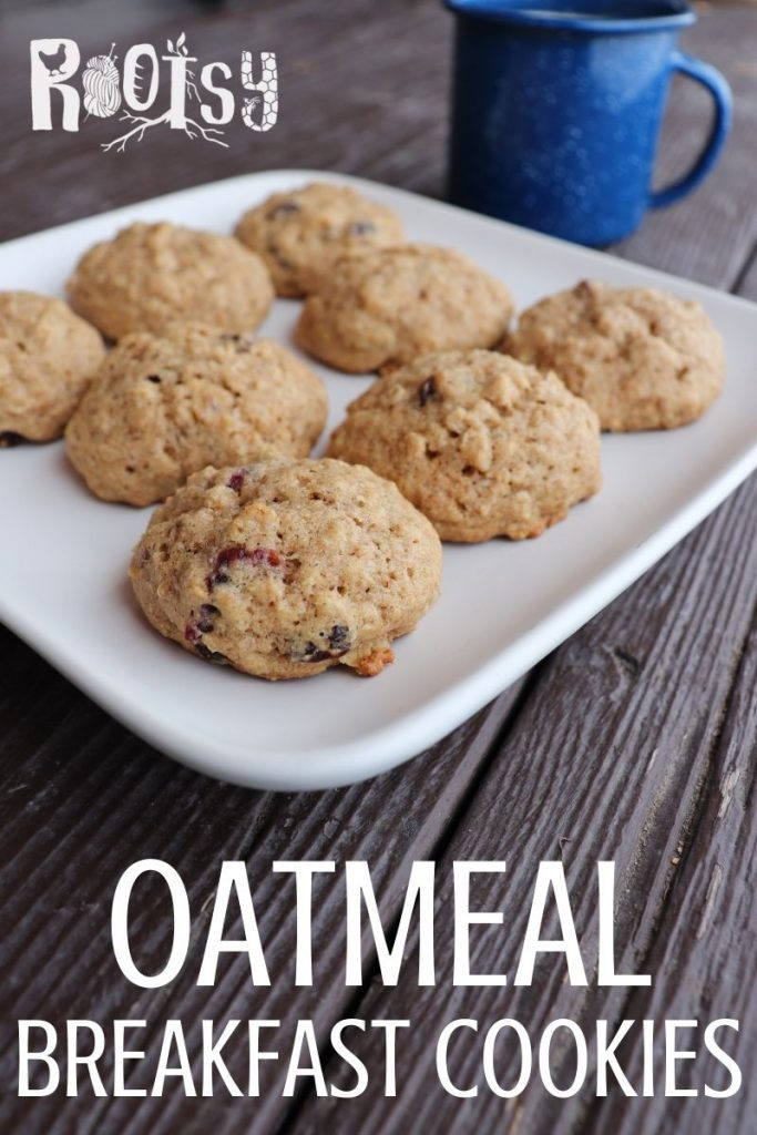 A plate of cookies with a blue tin coffee cup in the background with text overlay with oatmeal breakfast cookies.
