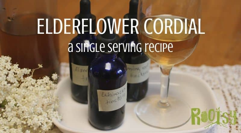 Single Serving Elderflower Cordial Recipe