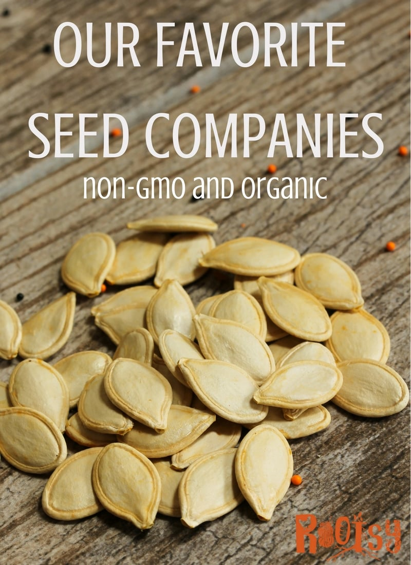 Wondering where to get organic, non-gmo seeds? At Rootsy, we're sharing our favorite seed companies, their catalogs, and why we like them.