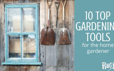 10 Best Garden Tools for Home Gardeners